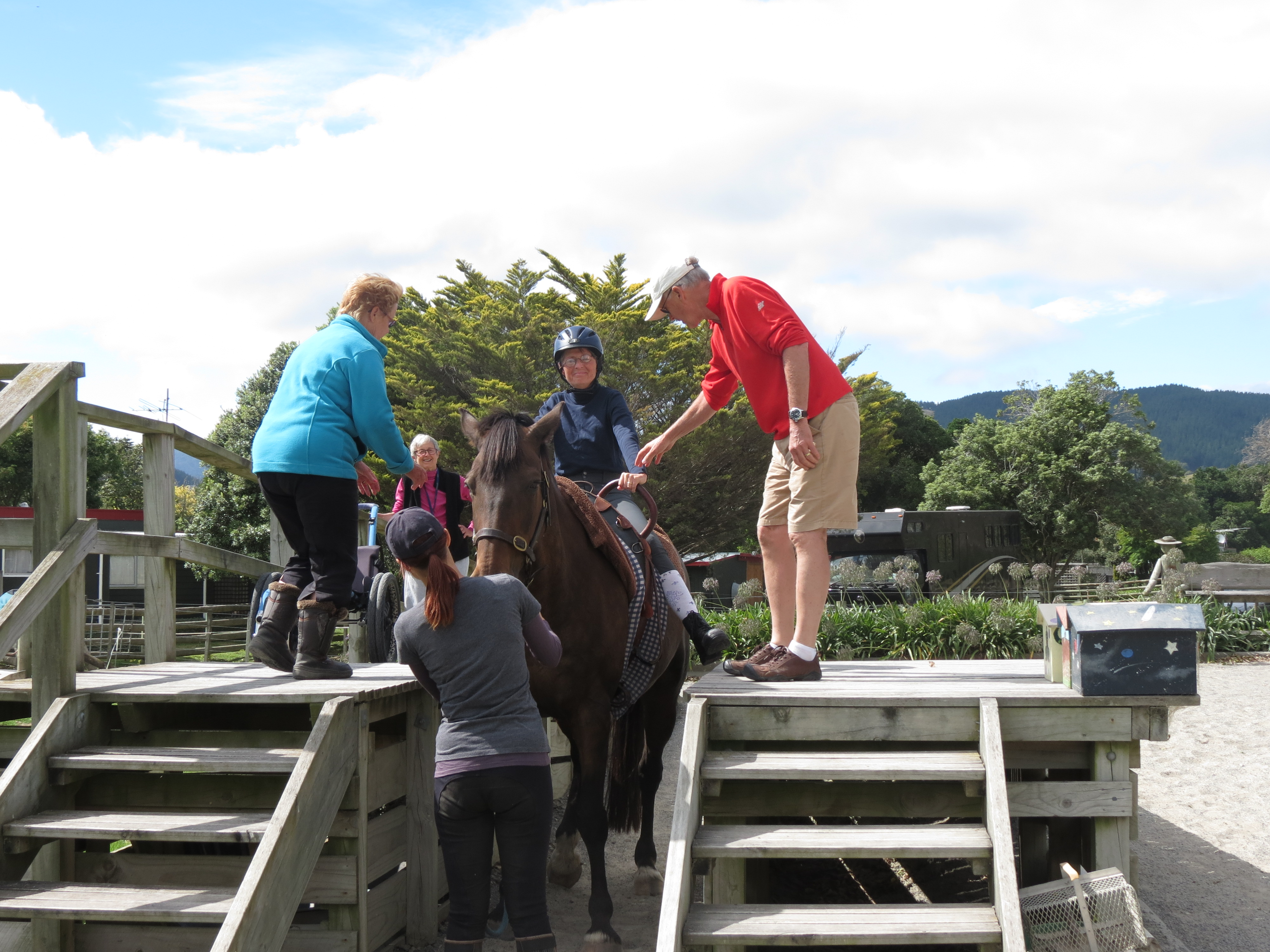Horse Riding Amp Vaulting For Therapy Kapiti Equestrian Centre